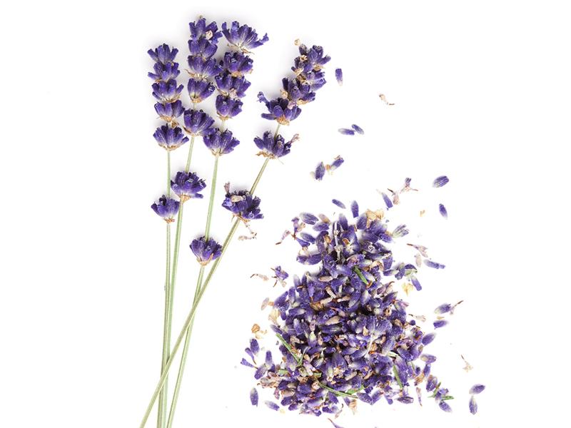 Bio Lavendelblüten, 500 g kbA